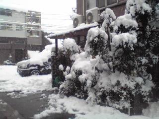 実家2010-01